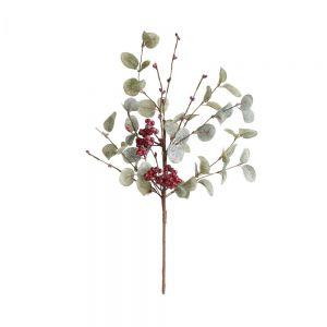 FLORISTA - κλαδί ευκαλύπτου 45cm