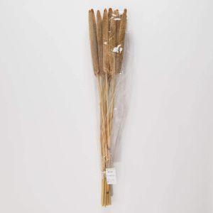 "FLORISTA - αποξηραμένο λουλούδι ""Babla"" 10 τεμάχια"