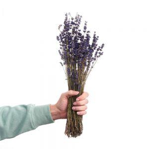 FLOWER MARKET - αποξηραμένη λεβάντα