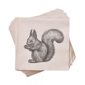 """APRES - χαρτοπετσέτες """"squirrel"""" recycling paper"""