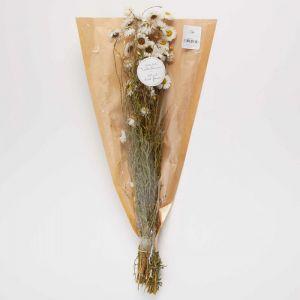 FLOWER MARKET - μαργαρίτες