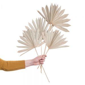 FLOWER MARKET - φύλλα φοίνικα 4 τεμάχια